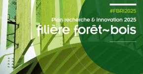 1605_plan RDI forêt