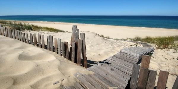 photo dune