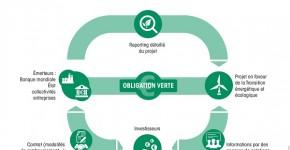 1701_Infographie sur les obligations vertes